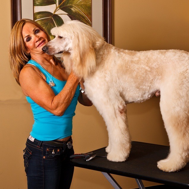 dog grooming, dog groomer, north palm beach fl, pet grooming, pet groomer