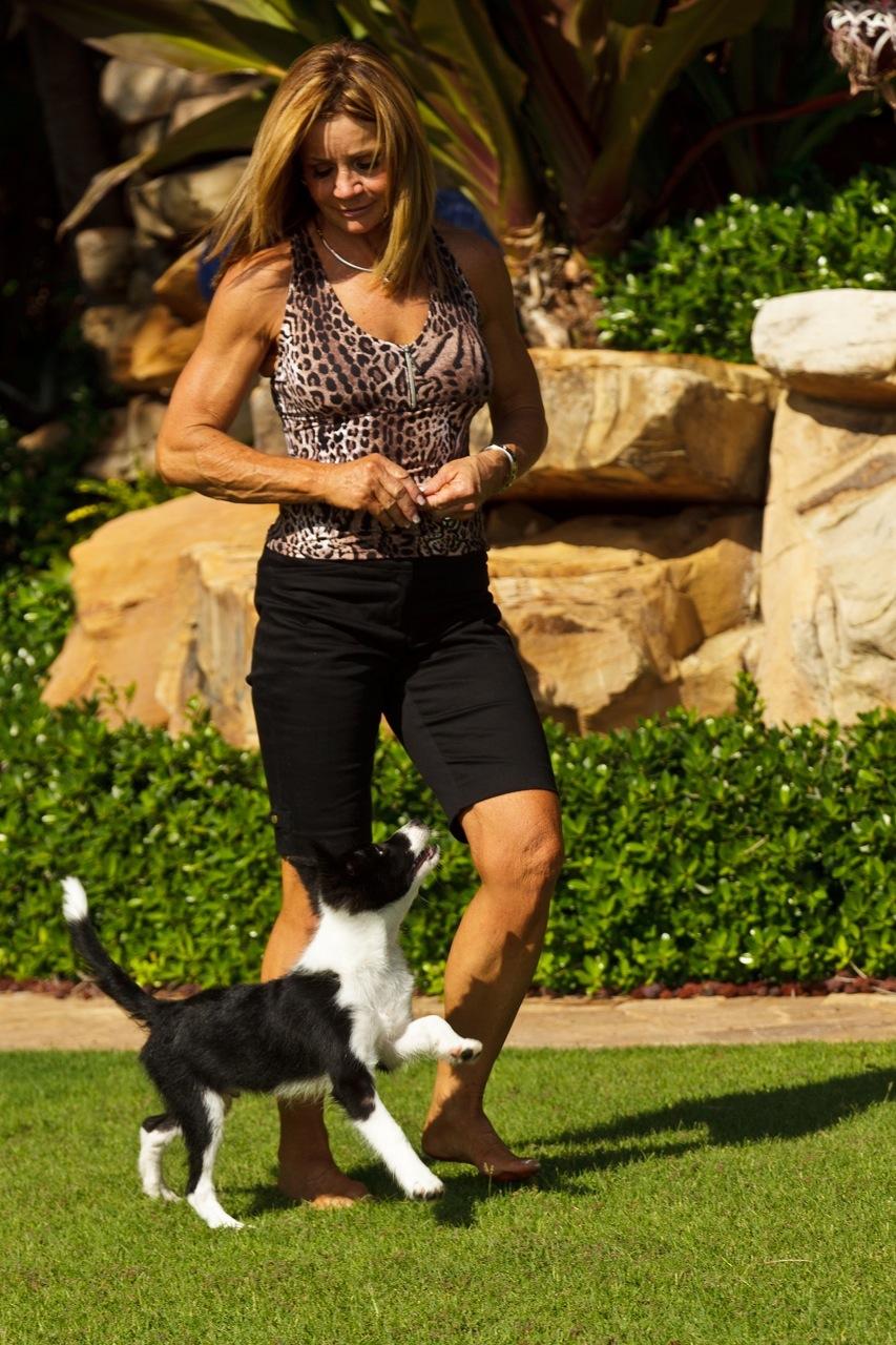 Neta Jones - Professional Dog Groomer in North Palm Beach, FL